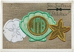 Shell ~ Starfish ~ Sand Dollar Trio Applique Design